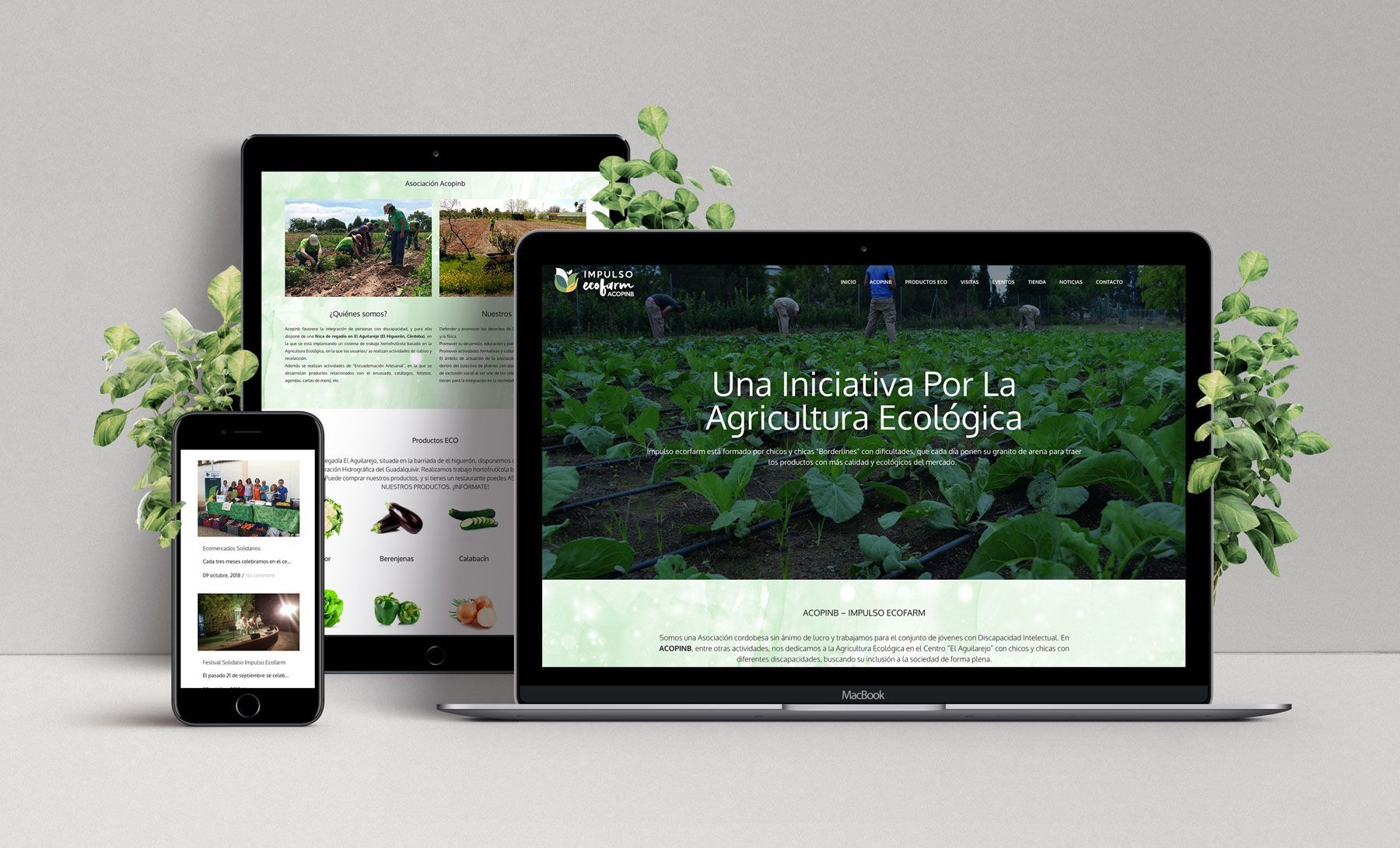 Diseño Web Impulso Ecofarm Acopinb